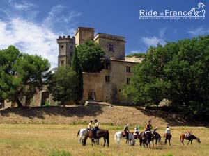 Free wallpapers about our equestrian holidays and horseback rides in Luberon - Provence - Ride in France