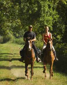 Charming weekend on horseback with Castle accommodation - Randocheval - Ride in France