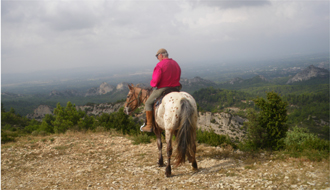 Horseback holidays and wine tasting rides in Provence - Ride in France
