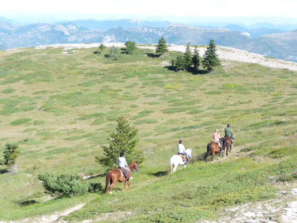 Horseback trail in Haute Provence On the footsteps of Jean Giono / Randocheval- Ride in France
