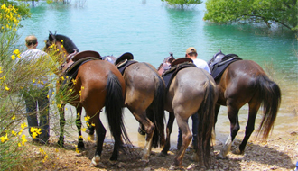 Horseback holidays in Corsica - Bonifacio's cliff - Ride in France