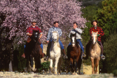 Horse riding tour to Provencal Colorado in Luberon (Provence) - Ride in France