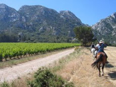 RIDE IN FRANCE - Ride in Alpilles
